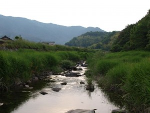 The Norogawa River
